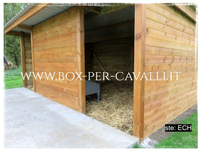 Box Per Cavalli It Lo Specialista Dei Box In Legno Per Cavalli